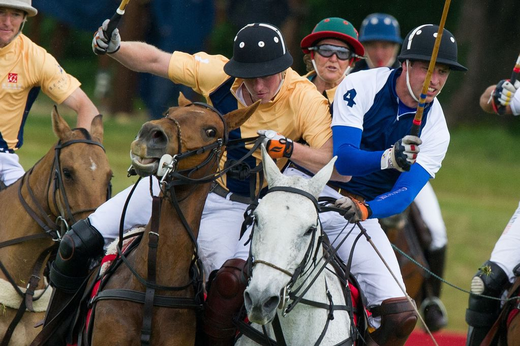 polo-ponies-and-riders-in-action-on-the-polo-field