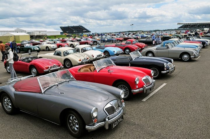 vintage-MG-cars-lined-up-polished-and-gleaming
