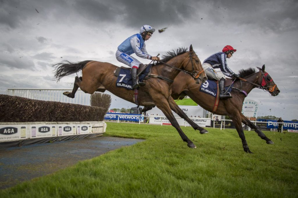 two-horses-and-jockies-landing-after-safely-clearing-a-fence-on-the-race-track